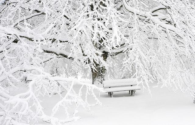 冬のおすすめオリジナルウェア